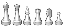 Chess pieces: king, queen, bishop, rook, knight,pawn
